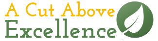 A Cut Above Excellence Logo